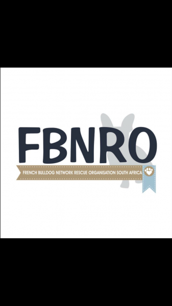 French Bulldog Network Rescue Org SA