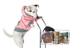 Pet Shops & Vet Shops