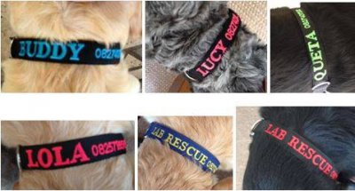 Custom Made Personalised Identification Collars For Pets