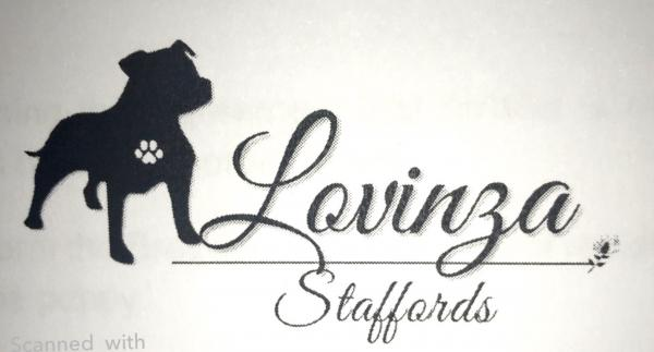Lovinza Staffords