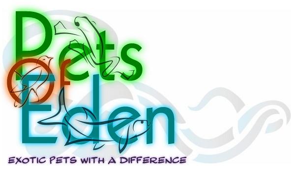 Pets Of Eden